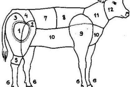 A borjú részei és felhasználási módjai