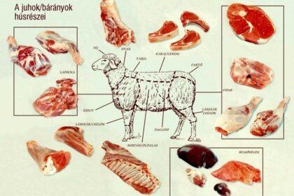 A juh/birka/bárány/ürü részeinek felhasználása: melyik húsból mit főzzünk?