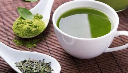 Zöld tea fogyasztó és egészségre gyakorolt hatásai